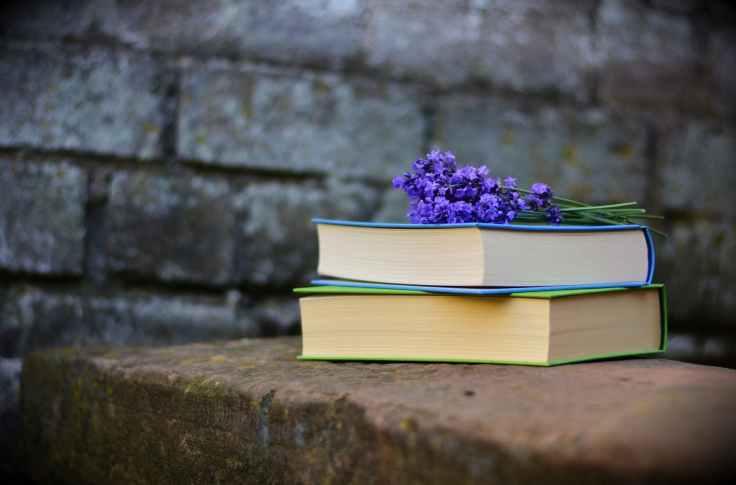 bench blur books color